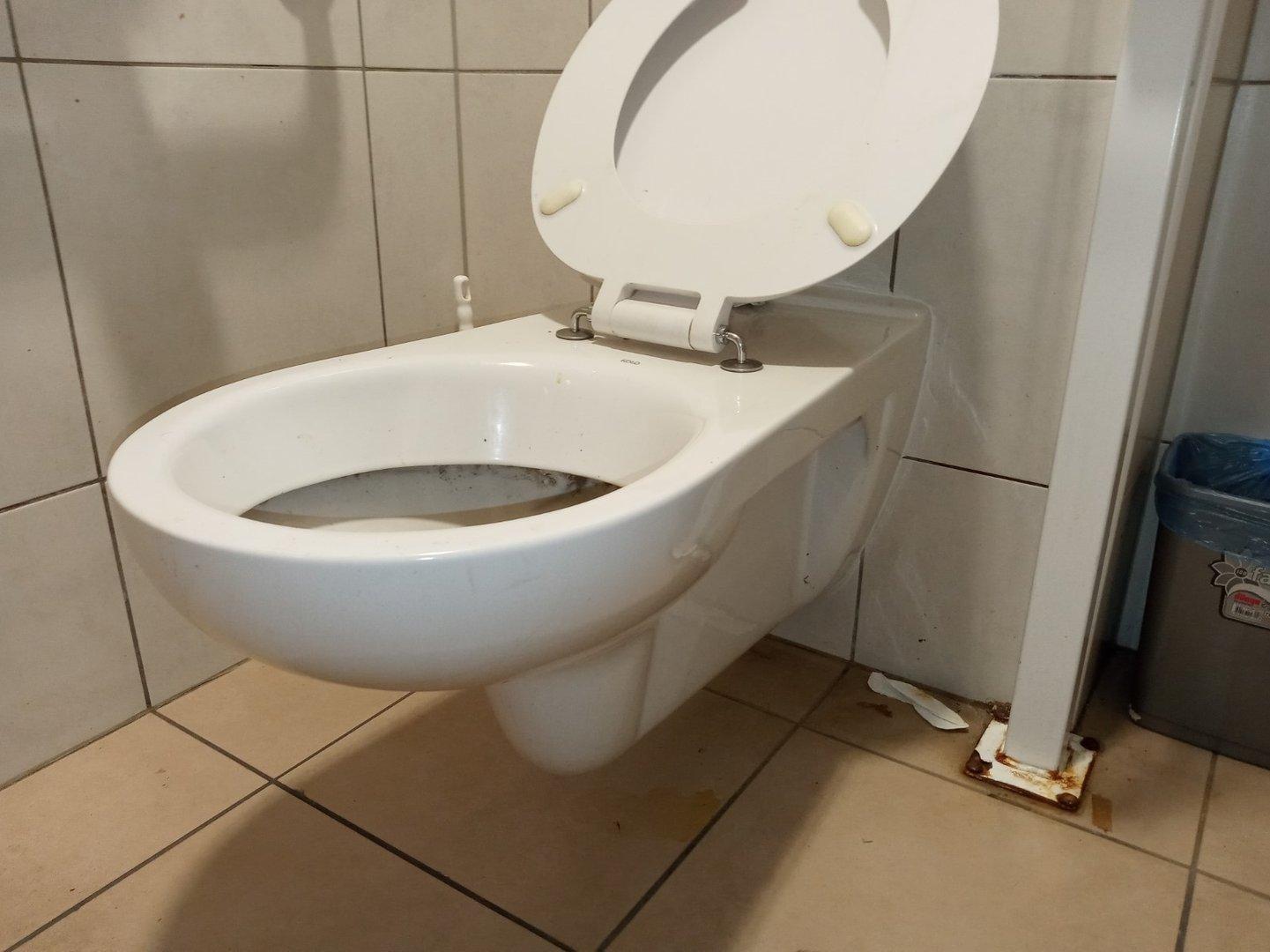 Toilet-pan